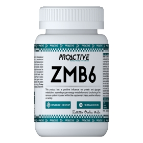 ProActive ZMB6